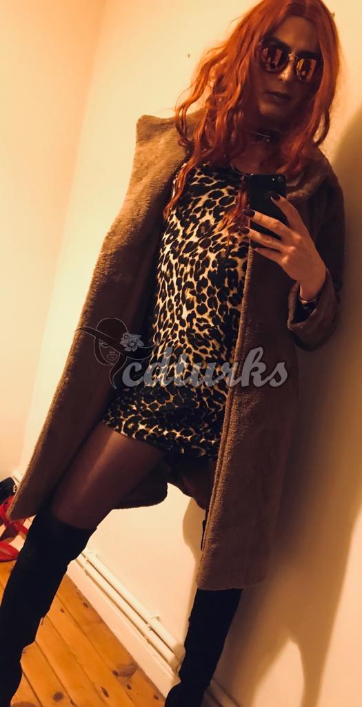 Cinna (2)
